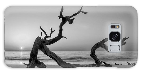 Jekyll Island Driftwood In Black And White Galaxy Case