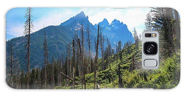 Jenny Lake Trail Galaxy Case