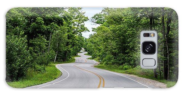 Jens Jensen's Winding Road Galaxy Case