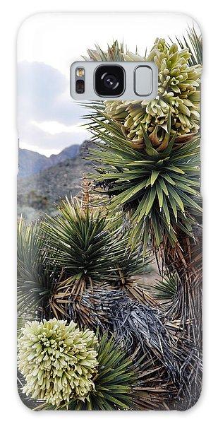 Galaxy Case featuring the photograph Joshua Tree Bloom Rainbow Mountain by Kyle Hanson