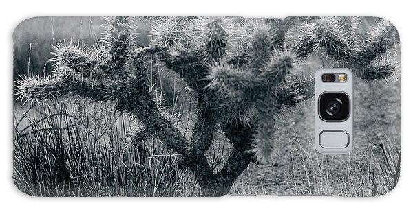 Joshua Tree Cactus Galaxy Case