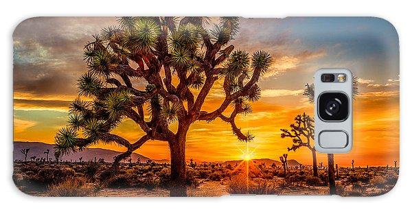 Joshua Tree Glow Galaxy Case