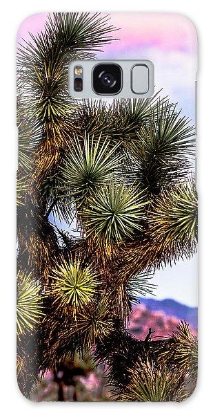 Joshua Tree Sunset Galaxy Case