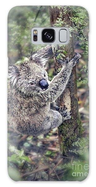 Koala Galaxy Case - Joyous Hangover by Evelina Kremsdorf