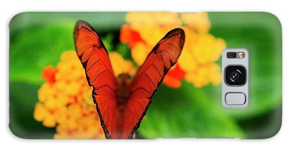 Julia Butterfly, Dryas Iulia Galaxy Case