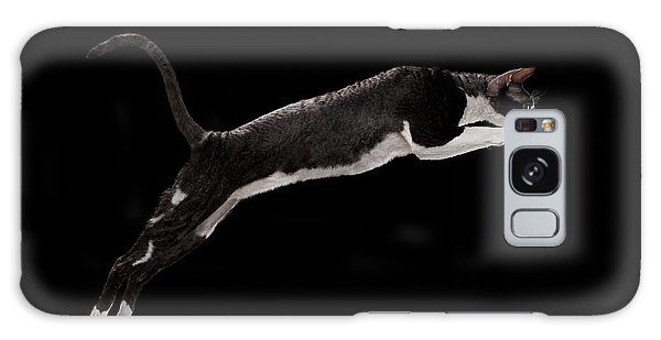 Jumping Cornish Rex Cat Isolated On Black Galaxy Case