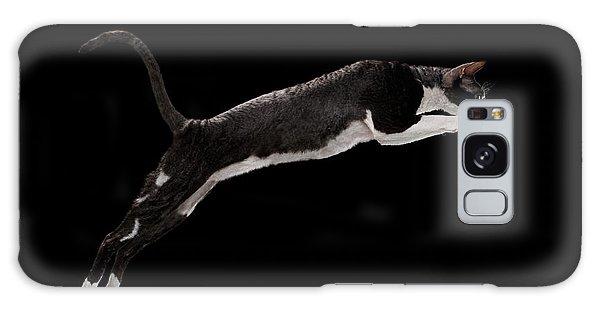 Jumping Cornish Rex Cat Isolated On Black Galaxy Case