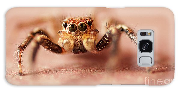 Jumping Spider Galaxy Case