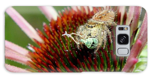 Jumping Spider With Green Weevil Snack Galaxy Case