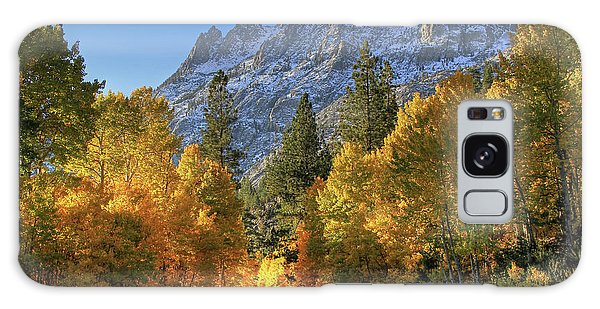June Lake Loop Galaxy Case by Donna Kennedy