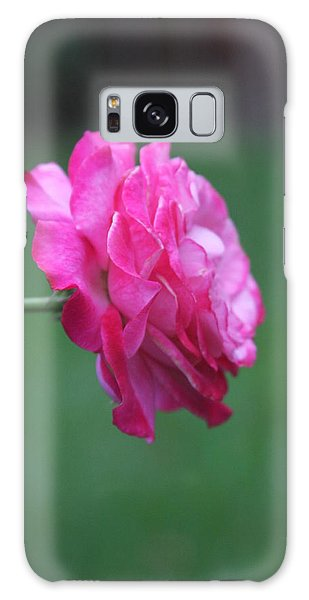 Galaxy Case featuring the photograph June Rose by Vadim Levin