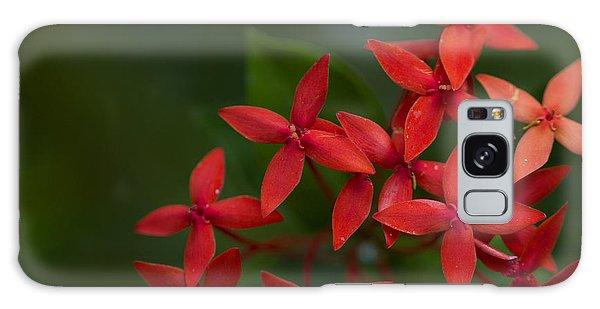 Jungle Geranium Galaxy Case by Marlo Horne