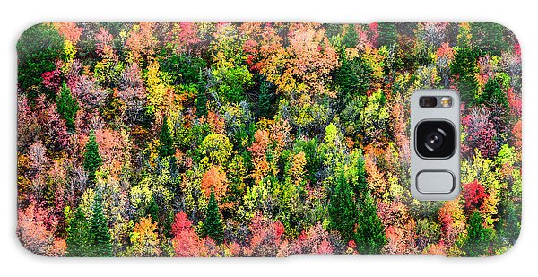 Foliage Galaxy Case - Just In Time by Chad Dutson
