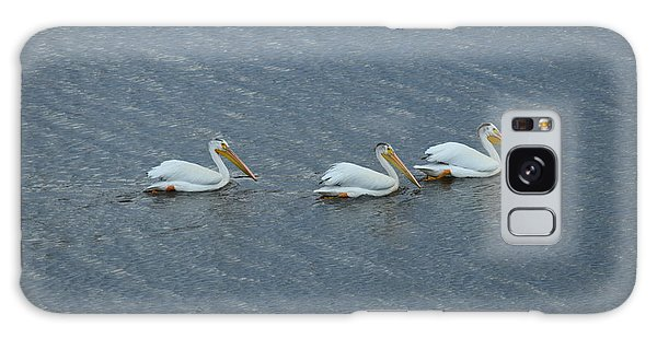 Triple Pelicans Lake John Swa Co Galaxy Case