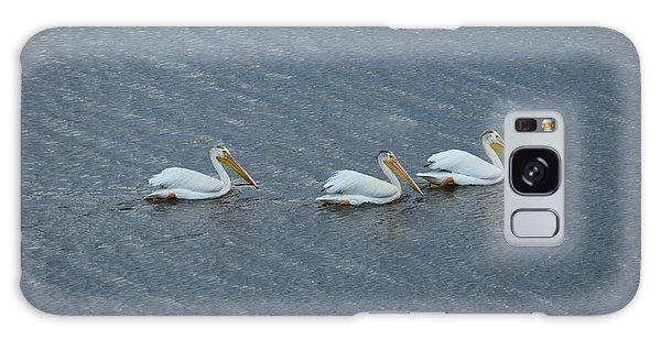 Triple Pelicans Lake John Swa Co Galaxy Case