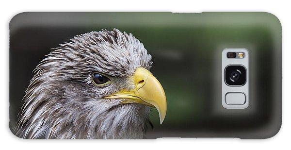Juvenile Bald Eagle Galaxy Case