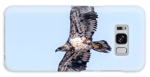 Galaxy Case featuring the photograph Juvenile Bald Eagle 2017 by Ricky L Jones