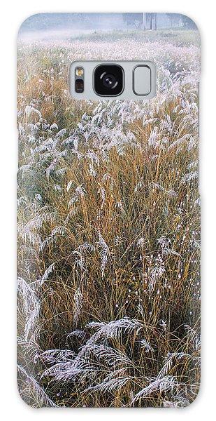 Kans Grass In Mist Galaxy Case