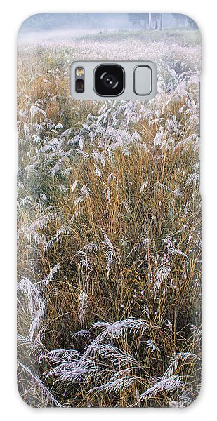 Kans Grass In Mist Galaxy Case