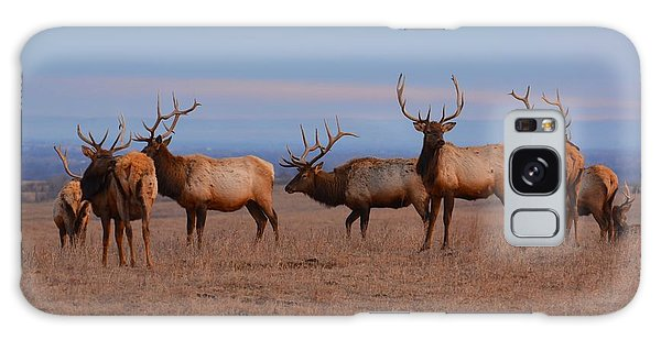 Kansas Elk Panarama Galaxy Case