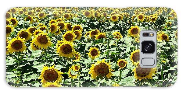 Kansas Sunflower Field Galaxy Case