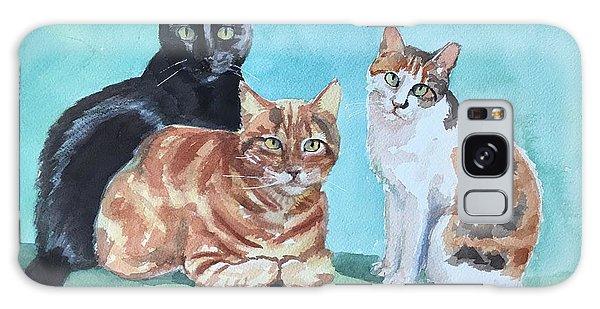Kates's Cats Galaxy Case