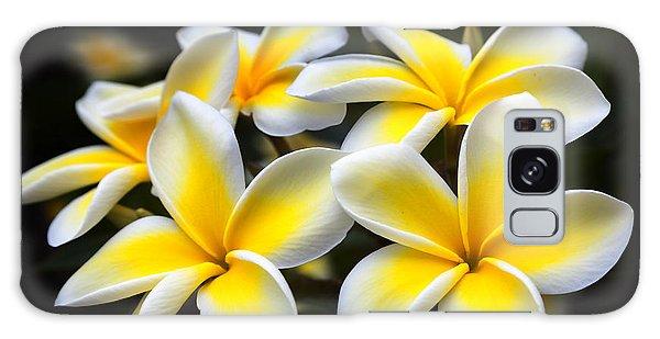 Kauai Plumerias Large Canvas Art, Canvas Print, Large Art, Large Wall Decor, Home Decor, Photograph Galaxy Case
