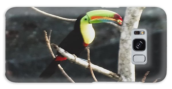 Keel-billed Toucan Galaxy Case