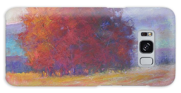 Keene Valley Galaxy Case by Susan Williamson