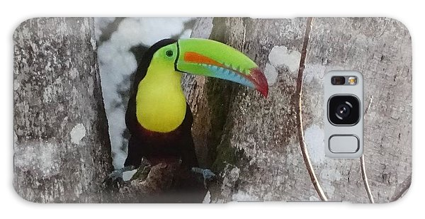 Keel-billed Toucan #2 Galaxy Case