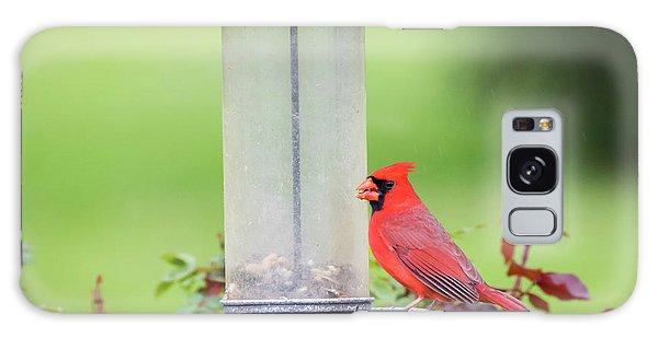 Galaxy Case featuring the photograph Kentucky Cardinal  by Ricky L Jones