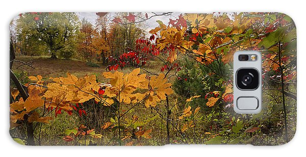 Kentucky Fall Colors Galaxy Case by Wendell Thompson