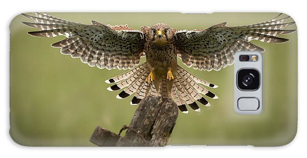 Kestrel On Final Approach Galaxy Case