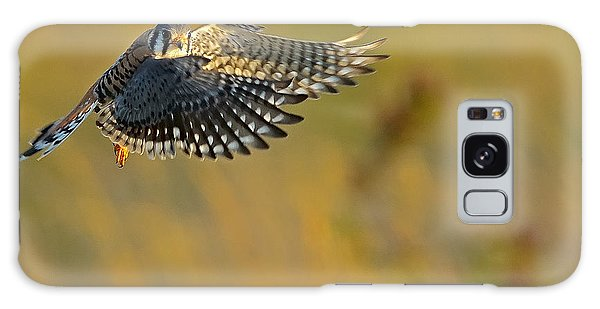Kestrel Takes Flight Galaxy Case
