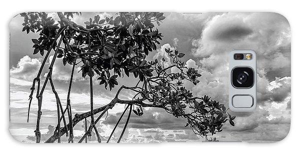 Key Largo Mangroves Galaxy Case