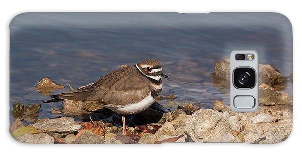 Killdeer Galaxy Case - Kildeer On The Rocks by Robert Frederick