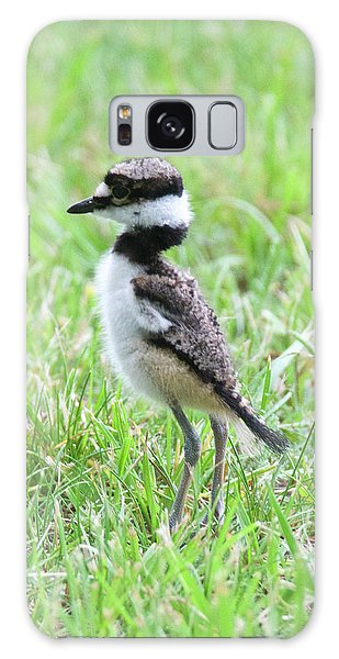 Killdeer Galaxy Case - Killdeer Chick 3825 by Michael Peychich