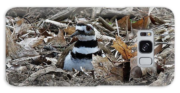 Killdeer Galaxy Case - Killdeer On It's Nest 2682 by Michael Peychich