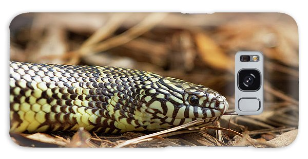 King Snake 1 Galaxy Case