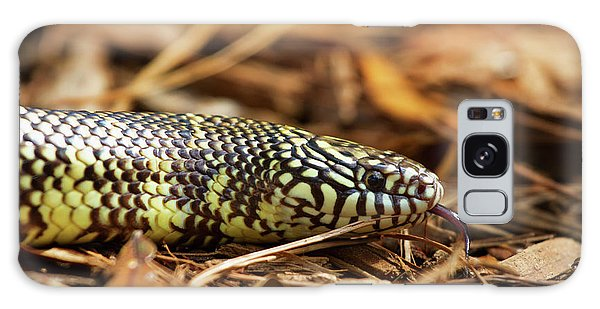 King Snake 2 Galaxy Case