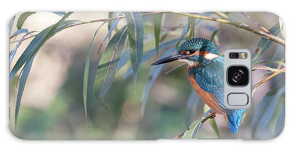 Kingfisher In Willow Galaxy Case