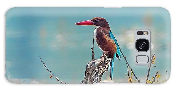 Kingfisher On A Stump Galaxy Case by Pravine Chester