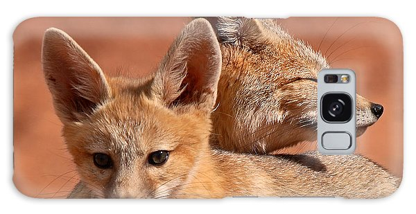 Kit Fox Pup Snuggling With Mother Galaxy Case