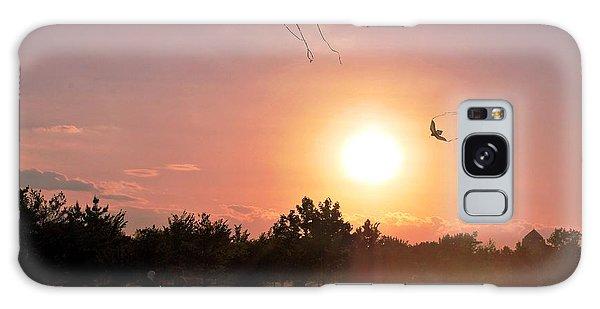 Kites Flying In Park Galaxy Case by Matt Harang