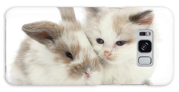 Kitten Cute Galaxy Case