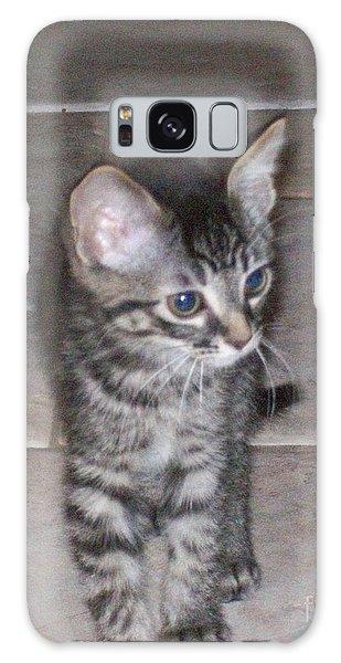 Martius Kitten Galaxy Case