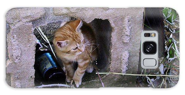 Kitten In The Junk Yard Galaxy Case by Larry Capra