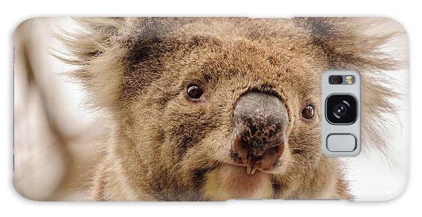 Koala 4 Galaxy Case