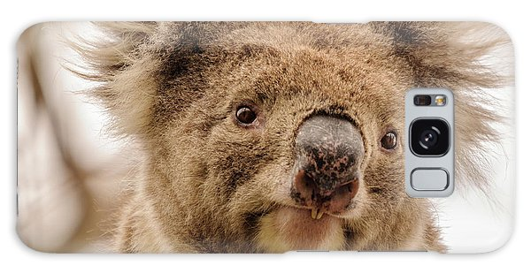 Koala 4 Galaxy Case by Werner Padarin