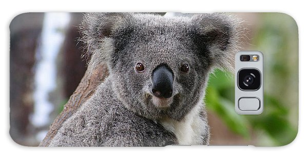 Koala Bear 7 Galaxy Case by Gary Crockett